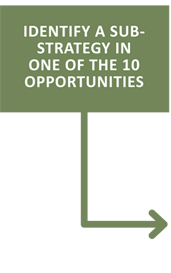 Identify a sub- strategy in one of the 10 opportunities