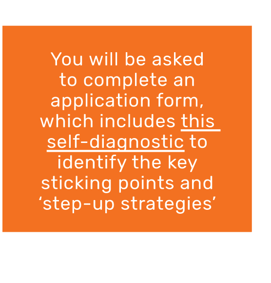 You will be asked to complete an application form, which includes this self-diagnostic to identify the key sticking points and step-up strategies